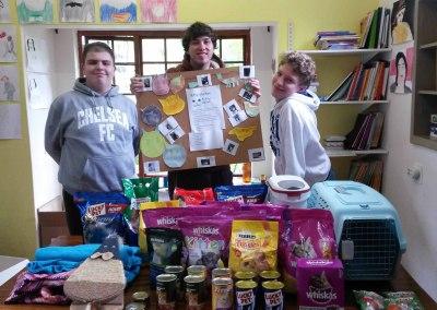 Kitty shelter donation
